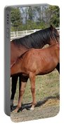 Foal Feeding With Milk Ranch Scene Portable Battery Charger