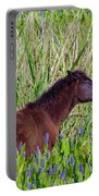 Foal Grazing  Portable Battery Charger