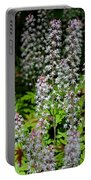 Foam Flower Tiarella Cordifolia Portable Battery Charger