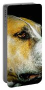 Focused Pitbull Portable Battery Charger