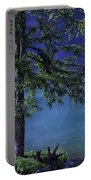 Fog Over The Pond Portable Battery Charger