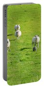 Following The Leader Portable Battery Charger