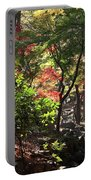 Forest #7 4k Portable Battery Charger