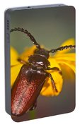 Forest Beetle Portable Battery Charger