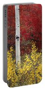 Forest Color Portable Battery Charger