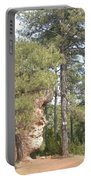 Forest Face Portable Battery Charger