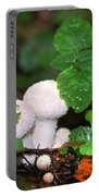 Forest Fairy Tale Portable Battery Charger