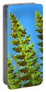 Forest Ferns Art Prints Blue Sky Botanical Baslee Troutman Portable Battery Charger