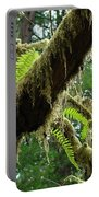 Forest Ferns Art Prints Fern Giclee Prints Baslee Troutman Portable Battery Charger