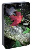 Forest Floor In Autumn Portable Battery Charger