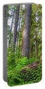 Forest Floor Of Hoh Rain Forest Portable Battery Charger