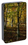 Forest Floor Two Portable Battery Charger