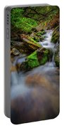 Forest Flow Portable Battery Charger