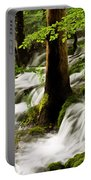 Forest Flows Portable Battery Charger