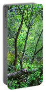 Forest In Hdr Portable Battery Charger