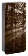 Forest Mist B And W Portable Battery Charger