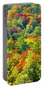 Forest Of Color Portable Battery Charger