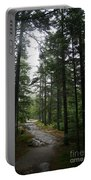 Forest Path At Grafton Notch State Park Portable Battery Charger