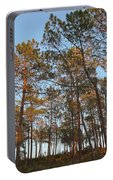 Forest Pine Trees At Sunset Portable Battery Charger