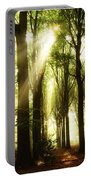 Forest Rays Portable Battery Charger