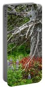 Forest Scene Portable Battery Charger