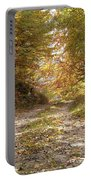 Forest Stone Path Portable Battery Charger