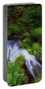 Forest Stream. Benmore Botanic Garden Portable Battery Charger