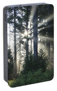 Forest Sunrise Portable Battery Charger