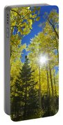 Forest Sunshine Portable Battery Charger