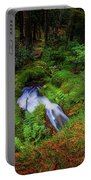 Forest  Water Stream. Benmore Botanic Garden Portable Battery Charger