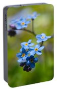 Forget-me-not 1 Portable Battery Charger