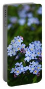 Forget Me Not 1 Portable Battery Charger