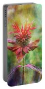 Formal Extravagance 2471 Idp_2 Portable Battery Charger