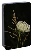 Formal Queen Anne's Lace Study Portrait Portable Battery Charger