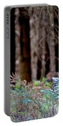 Forrest Portable Battery Charger