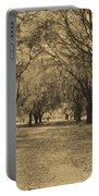 Fort Frederica Oaks Portable Battery Charger