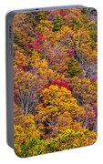 Fort Mountain State Park Cool Springs Overlook Portable Battery Charger