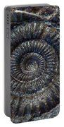 Fossil Ammonite - Dactylioceras Portable Battery Charger