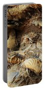 Fossil Shells Portable Battery Charger