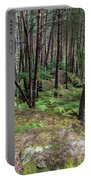 Fountainbleau Forest Portable Battery Charger