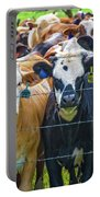 Four At The Fence Portable Battery Charger
