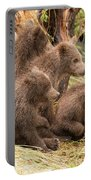Four Bear Cubs Looking In Same Direction Portable Battery Charger