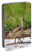 Four Marbled Godwits Portable Battery Charger