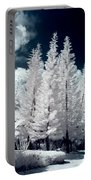 Four Tropical Pines Infrared Portable Battery Charger