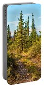 Four Wheeler Trail - Richardson Highway Portable Battery Charger
