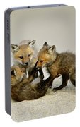 Fox Cubs At Play Portable Battery Charger