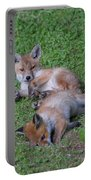Fox Cubs Chilling Out Portable Battery Charger