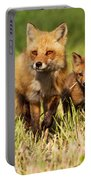 Fox Family Portable Battery Charger