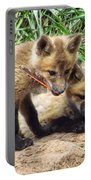 Fox Feather Play Portable Battery Charger