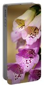 Fox Gloves Portable Battery Charger